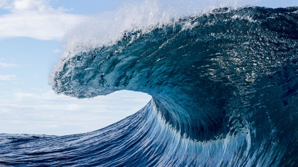 a wave