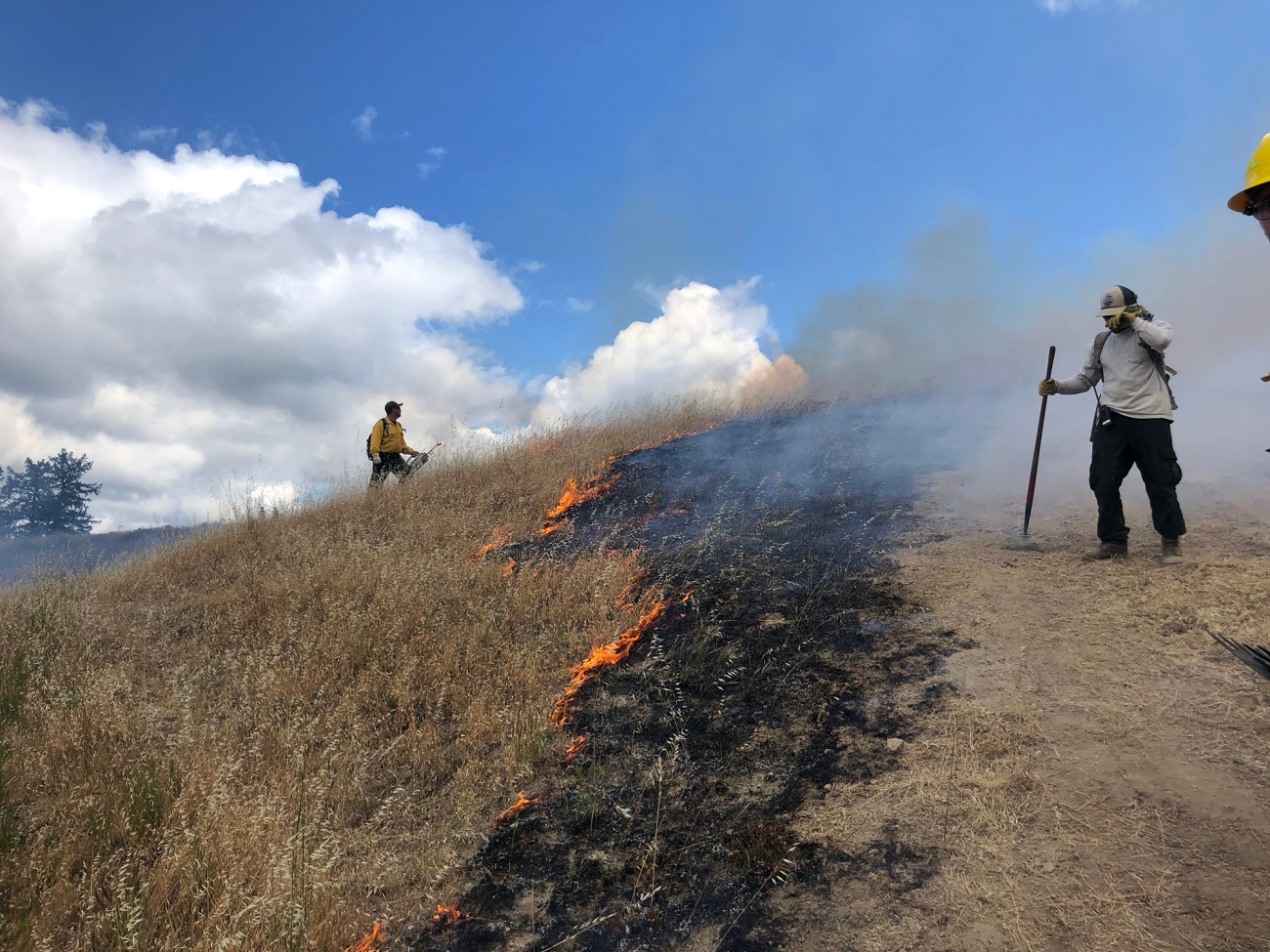 Two people stand on either side of a hillside fire line on a slightly cloudy day.