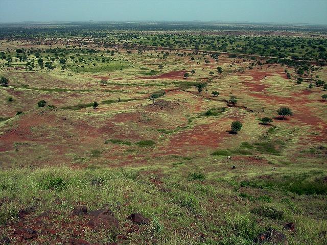 Sahel landscape: Center for International Forestry Research via Flickr